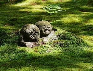 新緑が美しい京都の社寺