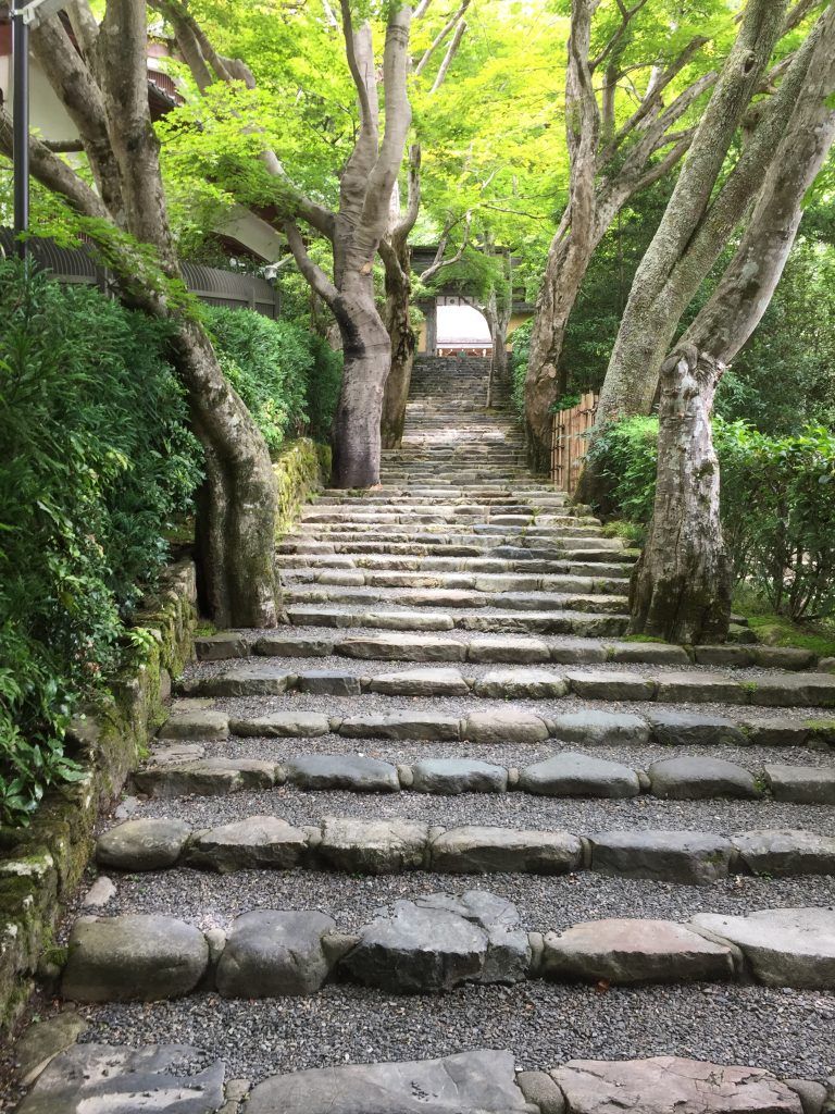 梅雨の京都 3