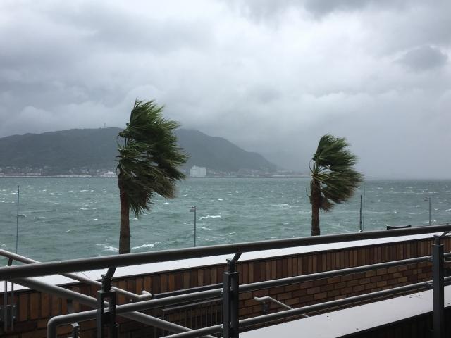 台風襲来 気象病